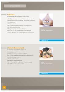 thumbnail of schweinehund-vortrag-gesundheitstag