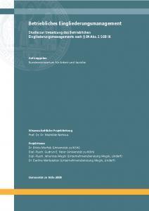 thumbnail of Studie-Umsetzung-BEM-2008