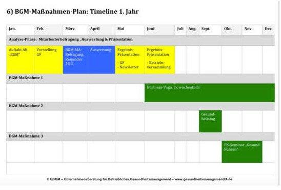 Praxisleitfaden Betriebliches Gesundheitsmanagement | UBGM